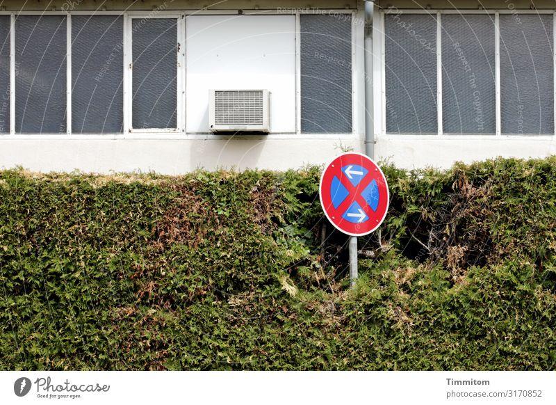 Verkehrsschild, kräftig blau Stadt grün weiß rot Fenster Fassade Metall Glas Schilder & Markierungen Beton Zeichen deutlich Industrieanlage Hecke