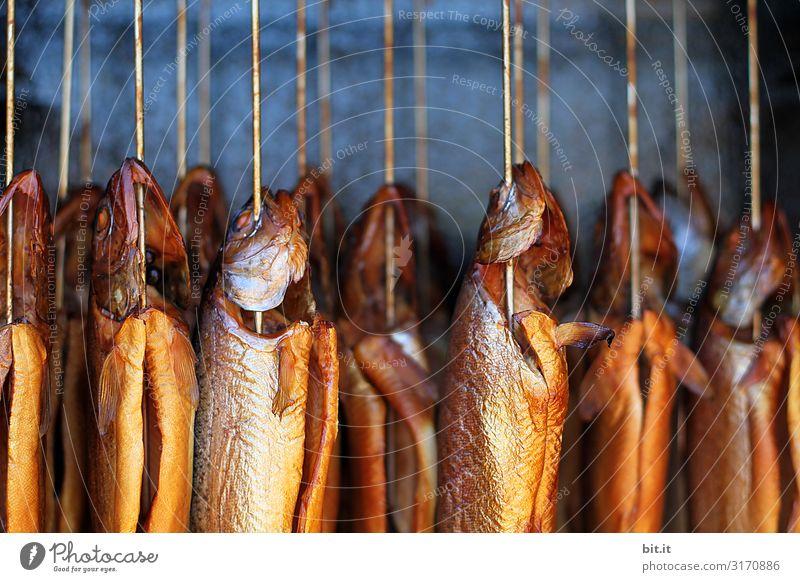 frischer, ganzer Fisch, hängt in einem Räucherofen mit Qualm zum Räuchern, auf einem Fischmarkt zum Kaufen. Räucherfisch geräuchert Ernährung Lebensmittel