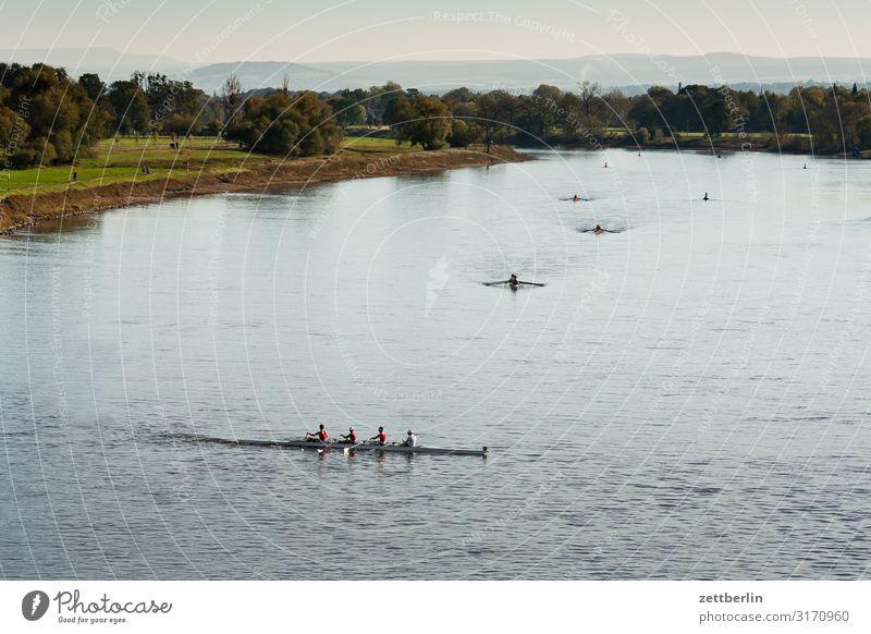 Wassersport auf der Elbe Blaues Wunder Brücke Dresden Elbufer Sachsen weißer hirsch Sport Fluss Rudern Ruderboot Wende