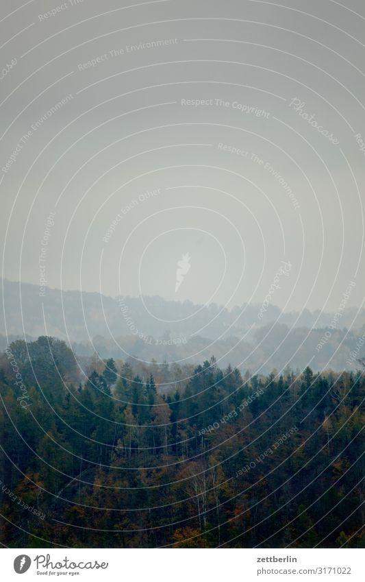 Neblige Aussicht Berge u. Gebirge Dorf Elbsandsteingebirge Erholung Felsen Ferien & Urlaub & Reisen Herbst Herbstlaub Hügel Landschaft Laubwald