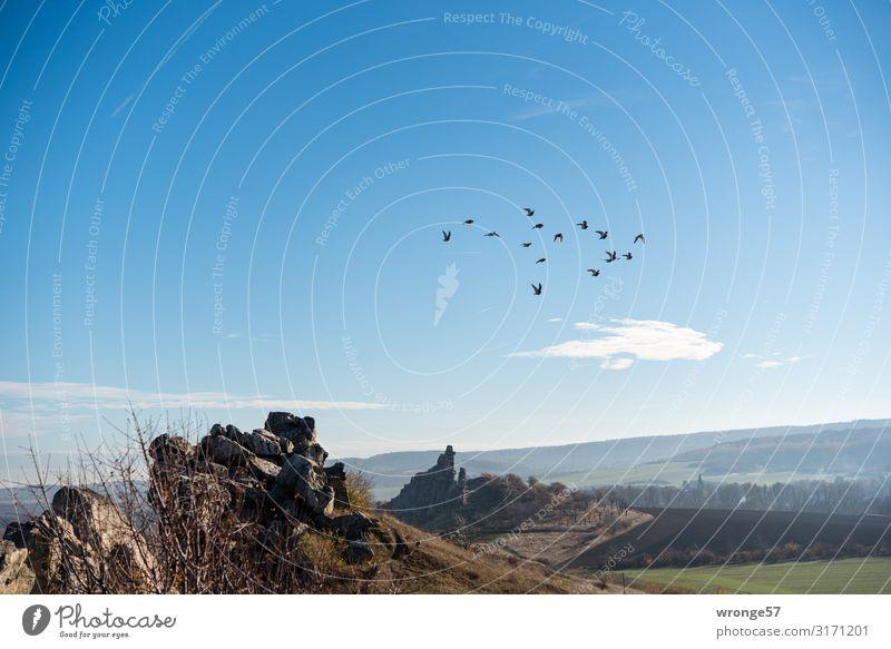 Ausflug Himmel Natur Sommer blau Landschaft Berge u. Gebirge Herbst Vogel braun Felsen fliegen Horizont Erde Schönes Wetter Feuer Unendlichkeit