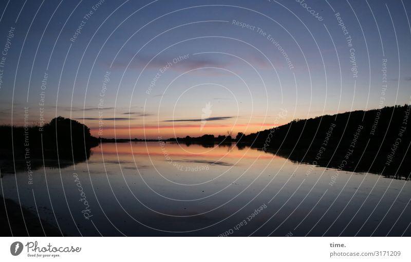 stiller Abend Umwelt Natur Landschaft Wasser Himmel Wolken Sonnenaufgang Sonnenuntergang Schönes Wetter Wald Küste Fluss Oder Gefühle Stimmung Zufriedenheit
