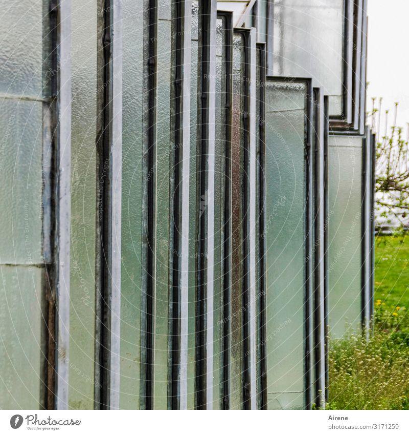 Scheibenwelt | AST 7 Bodensee Landwirtschaft Forstwirtschaft Gartenbau Gewächshaus Gärtnerei Insel Reichenau Bauwerk Glasscheibe eckig einfach blau grau