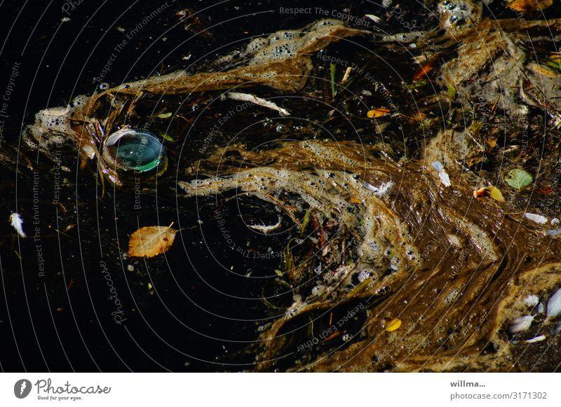 Das deutsche Reinheitsverbot   ,-) Teich Fluss Gewässer dreckig Kunststoff Müll beschmutzen Kletterpflanzen Wasserpflanze Blatt Schlamm Überleben