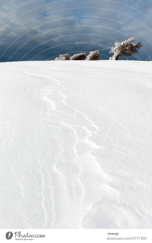 Formation Natur Landschaft Himmel Gewitterwolken Winter Schnee Baum 4 kalt Neigung Eis dunkel Schauinsland Farbfoto Außenaufnahme Menschenleer