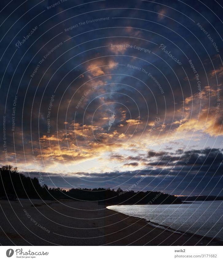 Letztes Leuchten Umwelt Natur Landschaft Luft Wasser Himmel Wolken Horizont Schönes Wetter Wald Seeufer Strand leuchten dunkel ruhig Traurigkeit Sorge Trauer