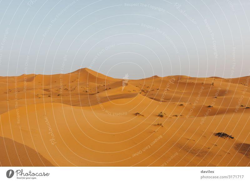 Sahara-Wüste in Marokko, mit schönen Dünenformen Ferien & Urlaub & Reisen Tourismus Abenteuer Berge u. Gebirge Natur Landschaft Sand Himmel Horizont Dürre