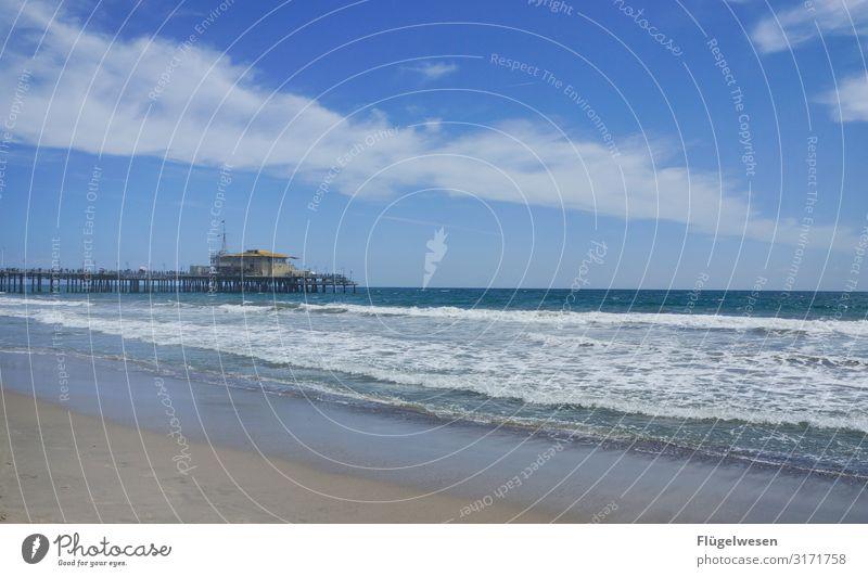 Beach LA Strand Malibu Santa Monica USA Amerika Los Angeles Palme Himmel Sommer Ferien & Urlaub & Reisen Sonne Sonnenbad Schwimmen & Baden Meer Atlantik Pazifik