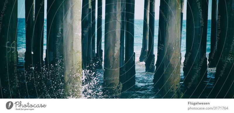 Dieters Bohlen Strand Malibu Santa Monica USA Amerika LA Los Angeles Palme Himmel Sommer Ferien & Urlaub & Reisen Sonne Sonnenbad Schwimmen & Baden Meer