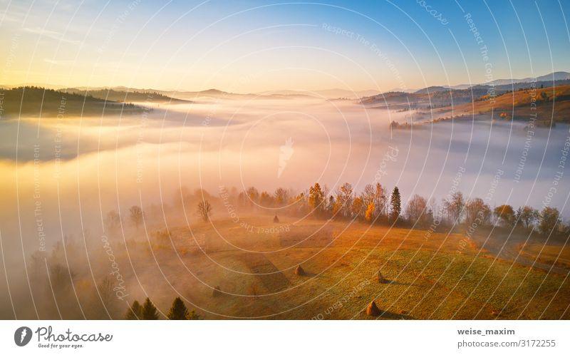 Ferien & Urlaub & Reisen Natur Sommer Landschaft Baum Wolken Blatt Wald Ferne Berge u. Gebirge Herbst Umwelt natürlich Wege & Pfade Wiese Tourismus