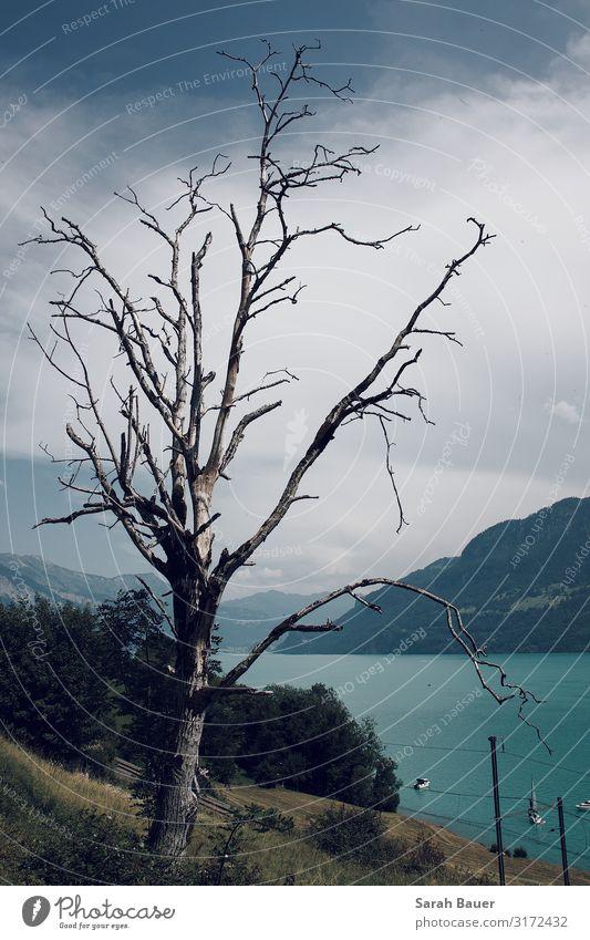 Weit Ferien & Urlaub & Reisen Tourismus Ferne Berge u. Gebirge wandern Natur Landschaft Wasser Himmel Wolken Hügel See Segelboot Schienenverkehr entdecken