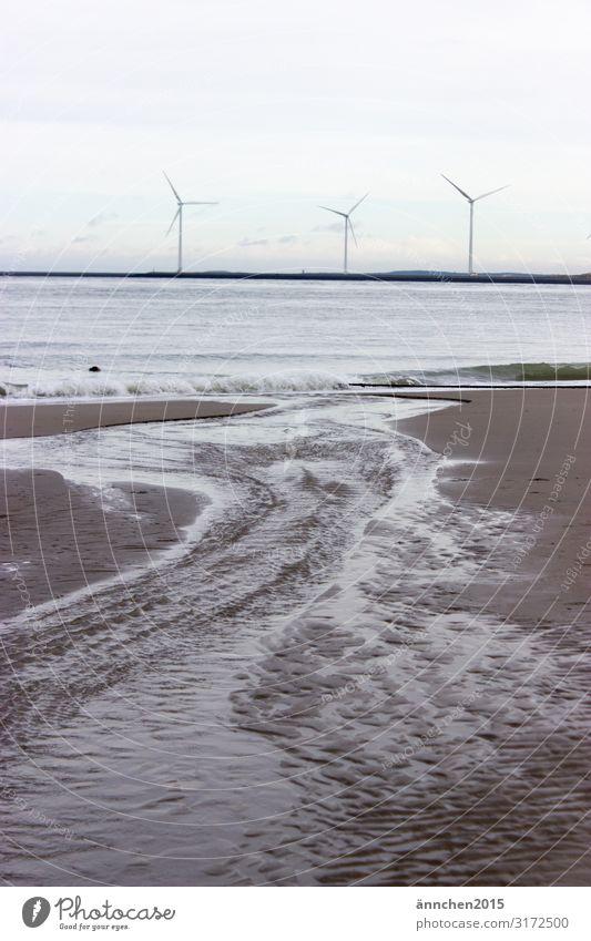 Ich suche mir den Weg zum Meer Strand Niederlande Ferien & Urlaub & Reisen Erholung Natur Sand Wasser Außenaufnahme Wellen Rauschen Luft Schaum Herbst Pause