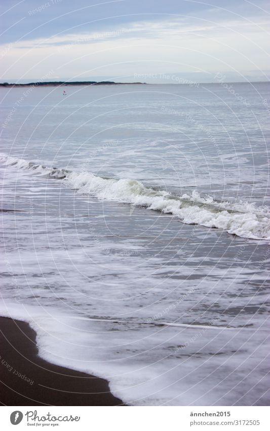 Meeresrauschen I Strand Niederlande Ferien & Urlaub & Reisen Erholung Natur Sand Wasser Außenaufnahme Wellen Rauschen Luft Schaum Herbst Pause Meditation Himmel