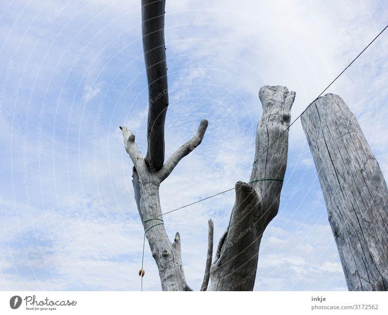 Schwemmholzskulptur Ferien & Urlaub & Reisen Tourismus Sommer Sommerurlaub Strand Skulptur Himmel Schönes Wetter Treibholz Schnur Holz natürlich trocken blau