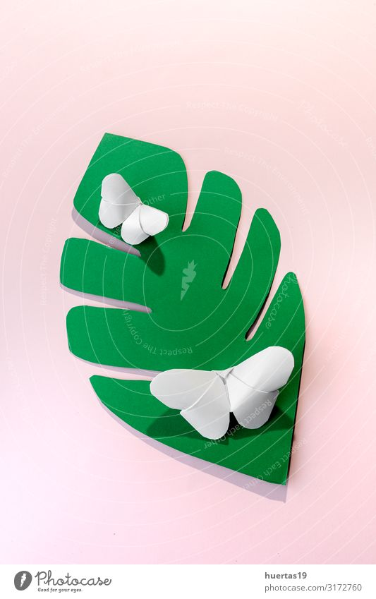 Mehrfarbige Origami-Schmetterlinge von oben Lifestyle Design schön Freizeit & Hobby Spielen Dekoration & Verzierung Tapete Kunst Künstler Kultur Papier