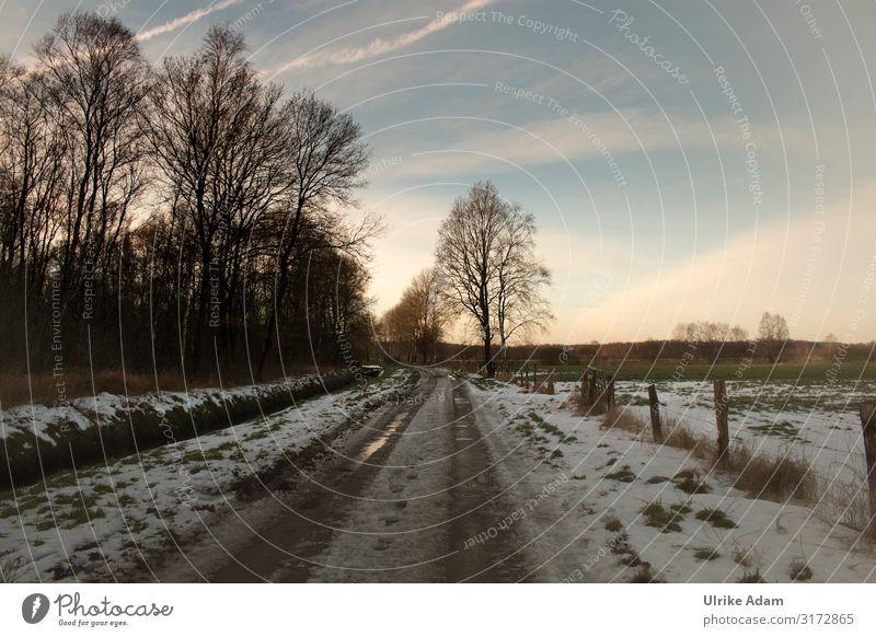 Winterliches Teufelsmoor bei Worpswede Ferien & Urlaub & Reisen Natur Weihnachten & Advent Landschaft Erholung kalt Wege & Pfade Schnee Deutschland Freiheit