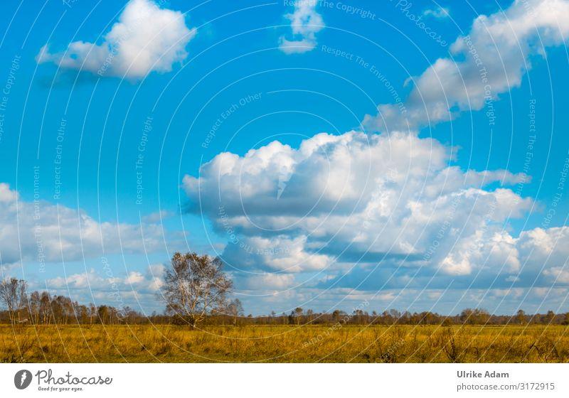 Weites Land Wellness harmonisch Zufriedenheit Erholung ruhig Meditation Spa Tourismus Freiheit Tapete Umwelt Natur Landschaft Himmel Wolken Horizont Frühling