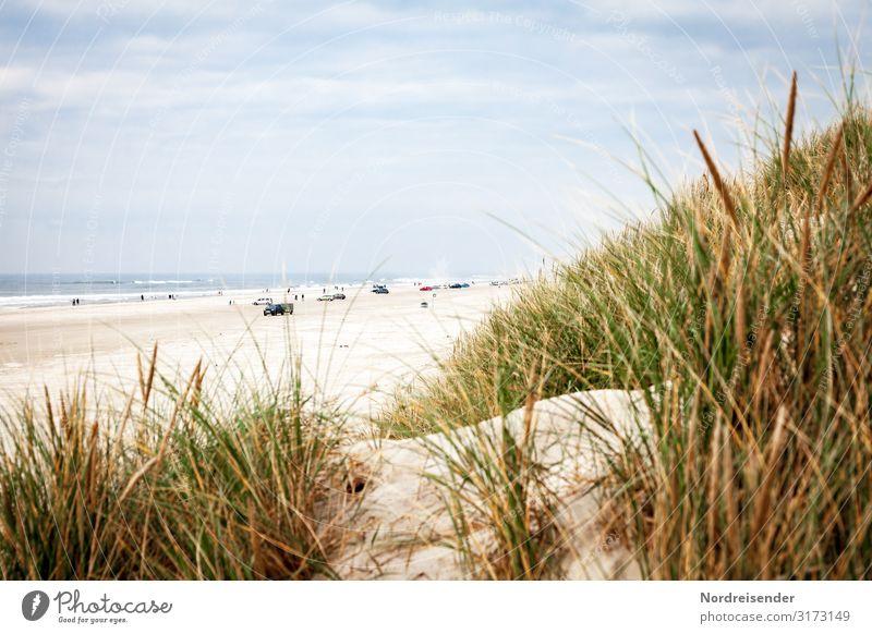 Autostrand in Dänemark Freizeit & Hobby Ferien & Urlaub & Reisen Tourismus Ausflug Freiheit Camping Sommer Sommerurlaub Strand Meer Natur Landschaft Sand Wasser