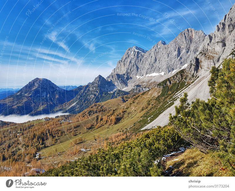 Dachsteinmasiv Umwelt Natur Landschaft Baum Sträucher Felsen Alpen Berge u. Gebirge Rötelstein fantastisch Freundlichkeit natürlich Wärme Lebensfreude träumen