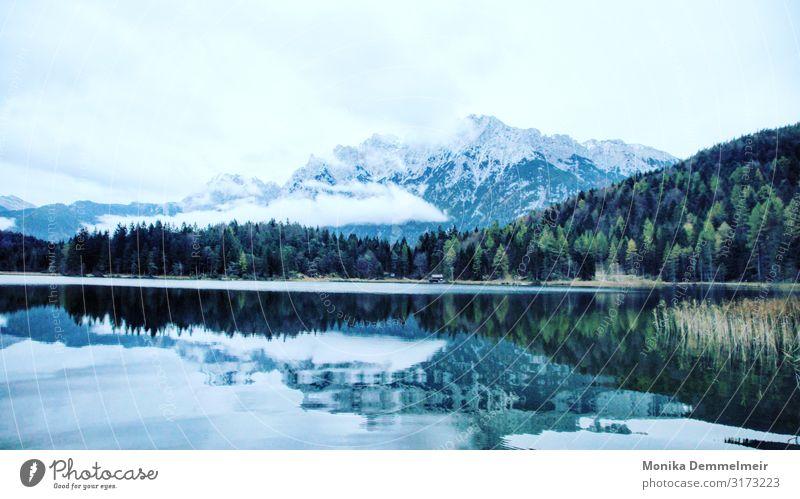 Seeliebe Wasser ruhig Reflexion & Spiegelung Natur Landschaft Außenaufnahme Menschenleer Farbfoto Seeufer Idylle Erholung Wasseroberfläche Himmel