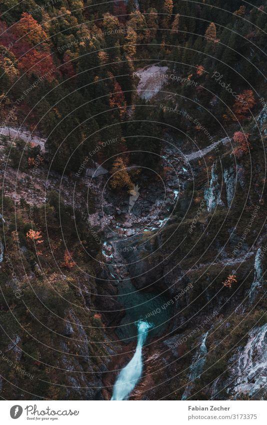 Herbstlicher Blick von der Marienbrücke Berge u. Gebirge wandern Natur Landschaft Erde Wasser Pflanze Mischwald Blatt Laubbaum Wald Fluss Wasserfall Brücke