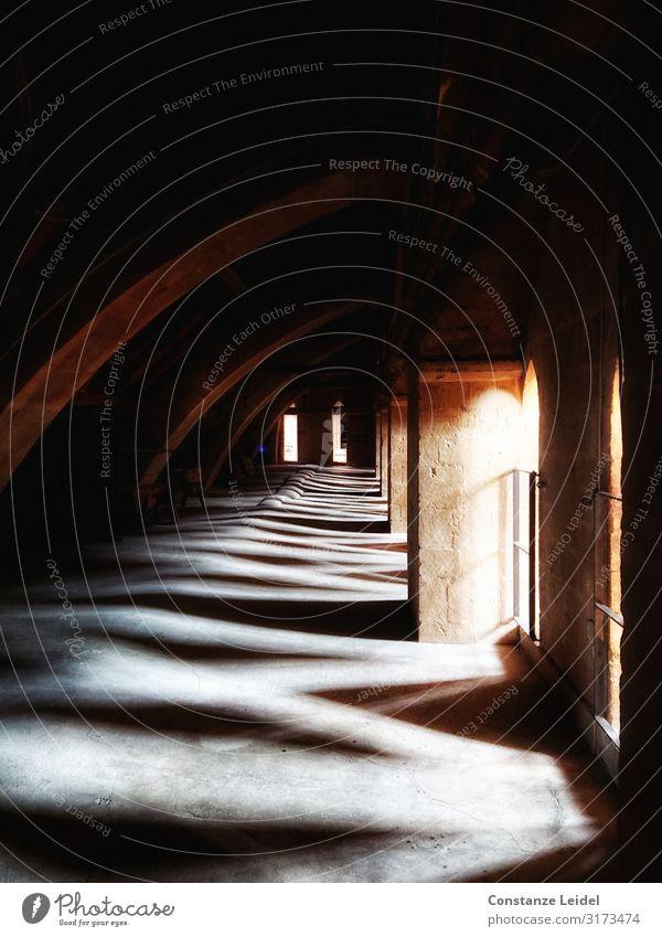 Licht und Schatten Wells Somerset Großbritannien Kirche Dom Bauwerk Gebäude Architektur Mauer Wand Dach Sehenswürdigkeit Wells Cathedral Ende Religion & Glaube