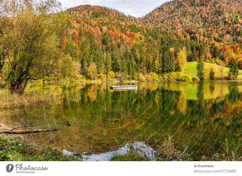 Herbstliche Landschaft Freizeit & Hobby Ferien & Urlaub & Reisen Tourismus wandern Natur Wasser Schönes Wetter Wald Hügel Alpen Seeufer Lebensfreude