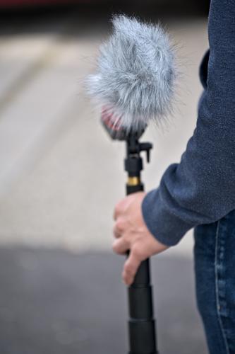 Junger Mann hält Mikrofon mit Windschutz Mensch Jugendliche Hand 18-30 Jahre Erwachsene maskulin Kommunizieren Arme Fell Teamwork 30-45 Jahre