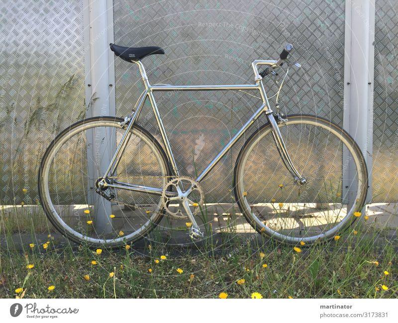silbernes single speed fahrrad vor metallwand Design Freizeit & Hobby Fahrrad Fahrradfahren singlespeed Rennrad Ausflug Fahrradtour Sport Metall Chrom fixi