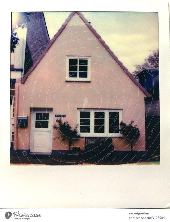 irgendwie aussermittig. Häusliches Leben Wohnung Traumhaus Himmel Pflanze Sträucher schleswig Kleinstadt Fassade Fenster Tür Briefkasten rosa Farbe Symmetrie