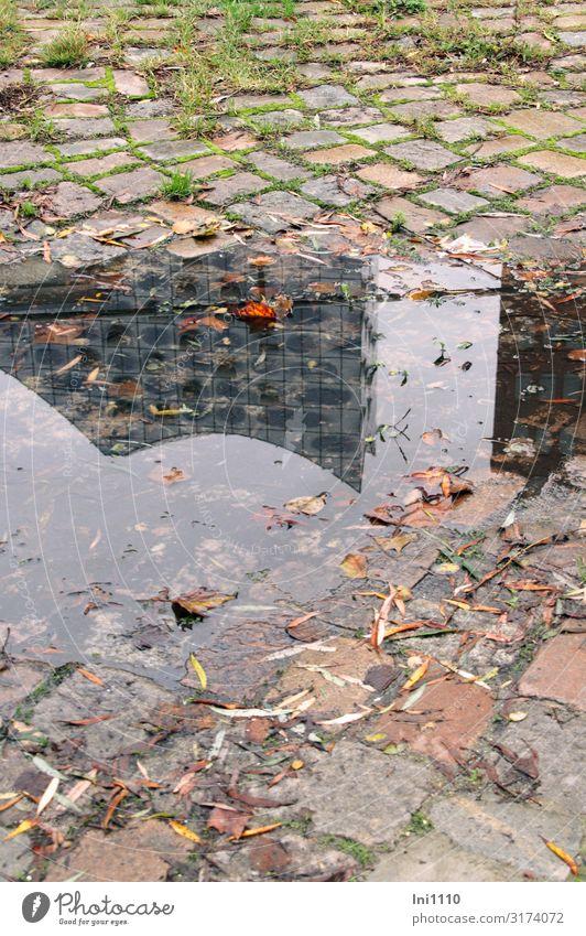 Wasserpfütze | UT Hamburg Tourismus Sightseeing Herbst schlechtes Wetter Gras Hafenstadt Bauwerk Fassade Sehenswürdigkeit Wahrzeichen braun grau grün schwarz