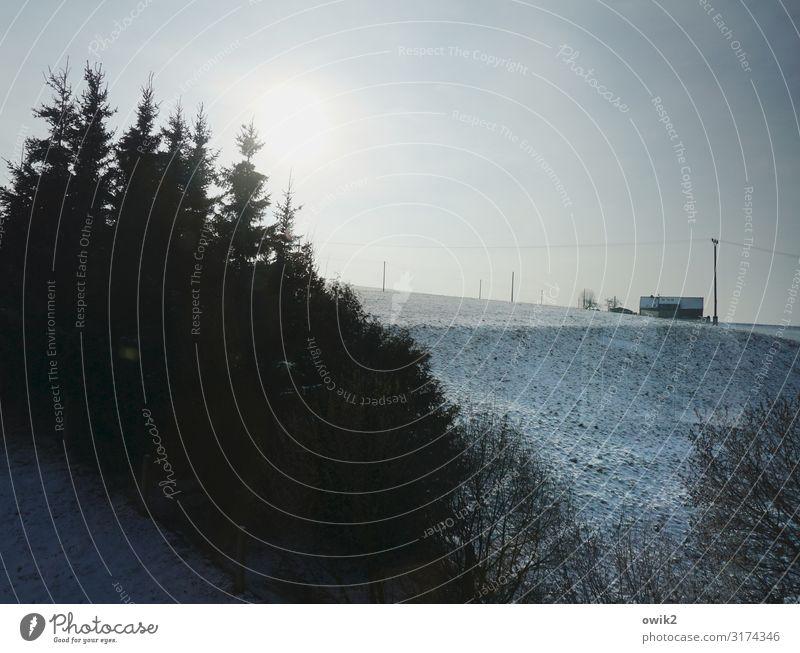 Leben am Abgrund Umwelt Natur Landschaft Luft Wolkenloser Himmel Horizont Sonne Sonnenaufgang Sonnenuntergang Winter Schnee Baum Gras Wiese Wald Thüringen