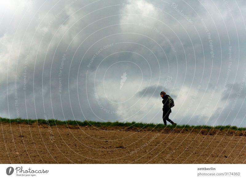 Wandern Frau Mensch Ferien & Urlaub & Reisen Natur Landschaft Erholung Wolken Einsamkeit Reisefotografie Ferne Berge u. Gebirge Herbst Textfreiraum Horizont