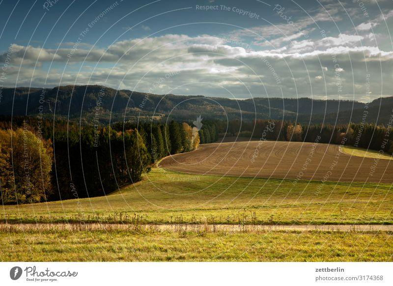 Hintere Sächsische Schweiz berg hügel dorf elbsandsteingebirge erholung felsen ferien herbst landschaft laubwald sächsische schweiz wandern wanderung licht