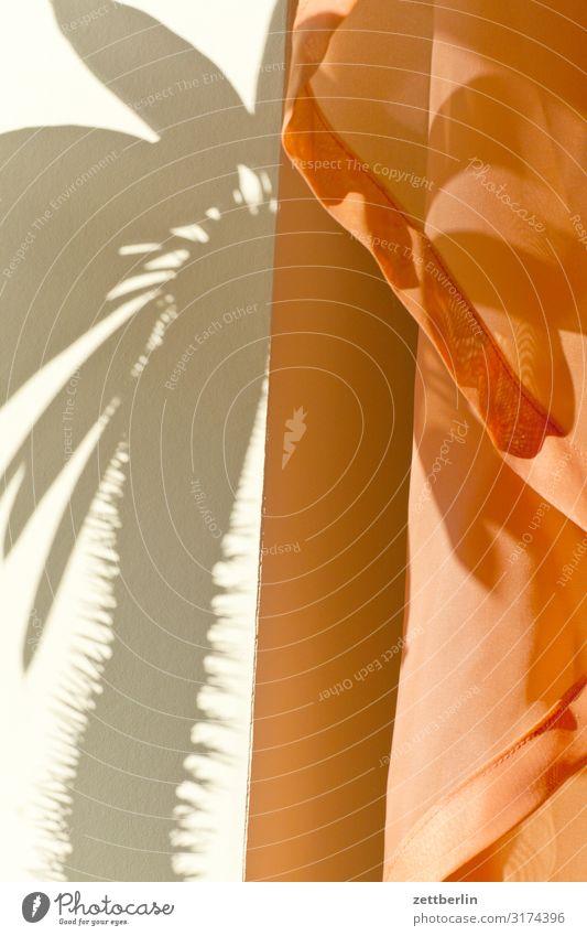 Schatten vom Kaktus im Hochformat Menschenleer Textfreiraum Strukturen & Formen Licht Vorhang Gardine Häusliches Leben Raum Innenarchitektur Stoff Textilien