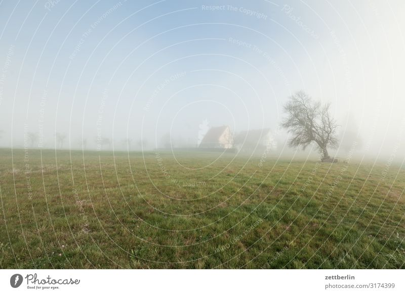 Dorf im Nebel Dunst Herbst Herbstfärbung Herbstprogramm Landschaft Menschenleer Morgen Perspektive Ferne Sonne Textfreiraum Wetter Winter Wintermorgen Horizont
