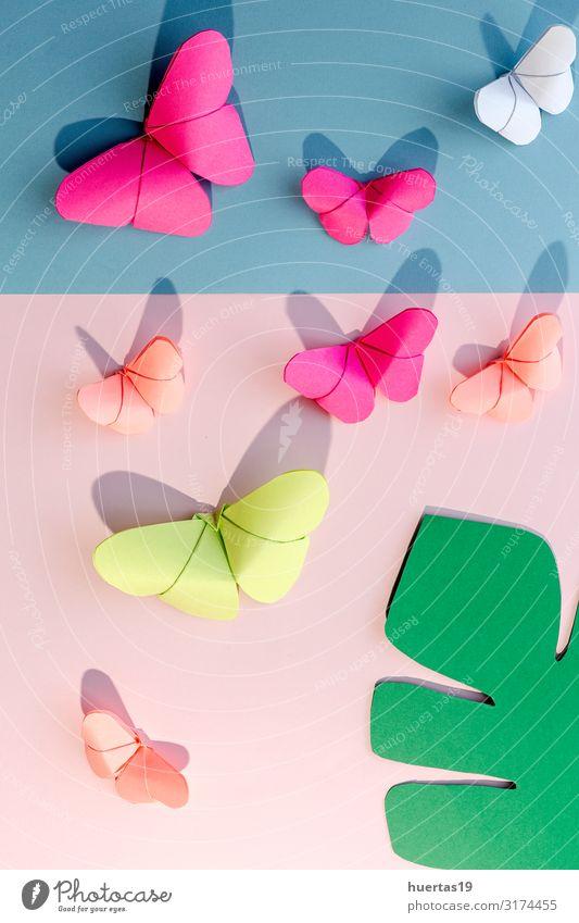 Mehrfarbige Origami-Schmetterlinge von oben Lifestyle Design schön Freizeit & Hobby Spielen Dekoration & Verzierung Tapete Kunst Kultur Papier Spielzeug