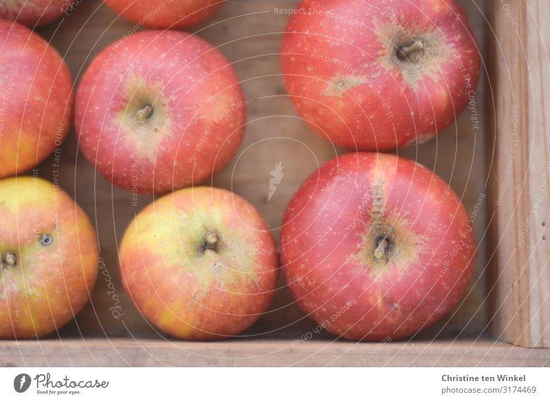 Äpfel in einer Holzkiste Lebensmittel Frucht Apfel Cox Orange Ernährung Bioprodukte Vegetarische Ernährung Kasten ästhetisch authentisch einfach frisch