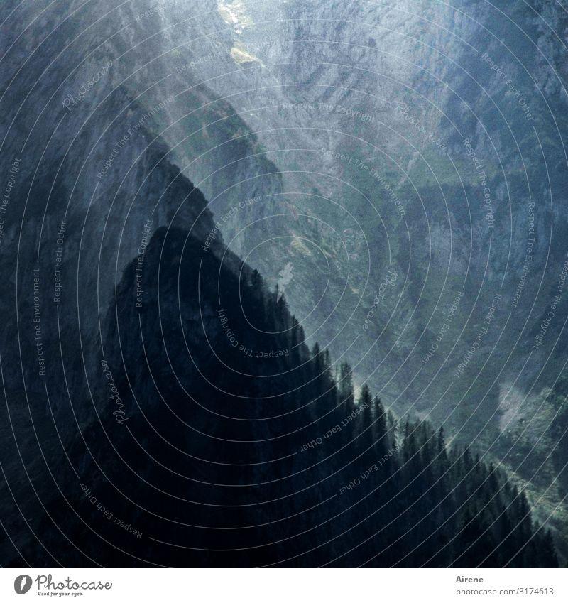 letztes Licht Schönes Wetter Felsen Alpen Berge u. Gebirge Kaisergebirge Schlucht Bergwald Felswand außergewöhnlich bedrohlich dunkel hoch blau schwarz Fernweh