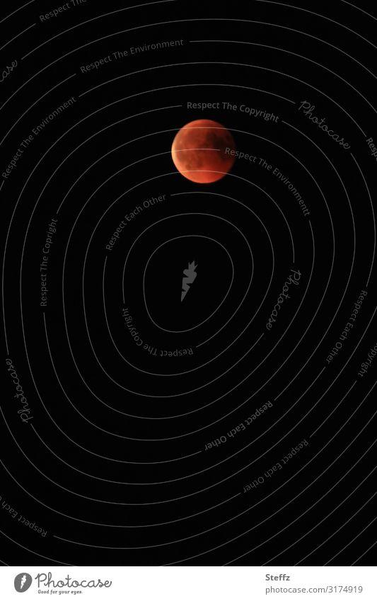 Mond in rot Umwelt Natur Nachthimmel Mondfinsternis Vollmond leuchten außergewöhnlich dunkel natürlich rund schön orange schwarz Stimmung Romantik Sehnsucht