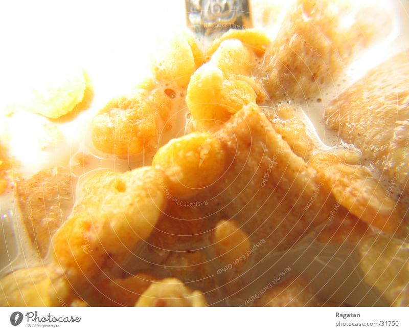 Frühstück Müsli Cornflakes Makroaufnahme Ernährung Nahaufnahme