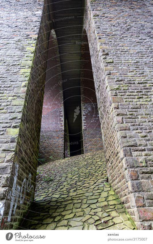 Brückenpfeiler mit Schwung Bauwerk Bogen Architektur Moos Bergisches Land Tor Stein groß hoch rund gemauert geschwungen Außenaufnahme Weitwinkel Mauer xenias