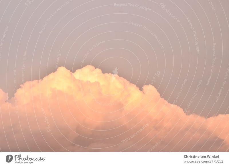 Wolken in der Abendsonne Umwelt Natur Himmel Sonnenaufgang Sonnenuntergang Sonnenlicht Herbst Schönes Wetter außergewöhnlich fantastisch groß hell natürlich