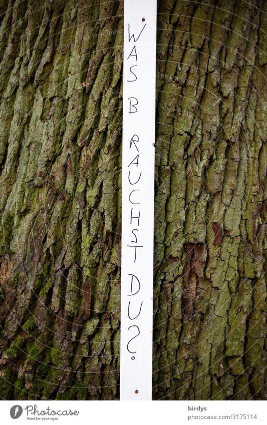 Was brauchst du ? Baum Baumrinde Schriftzeichen Schilder & Markierungen Streifen einfach Neugier dünn braun schwarz weiß Begierde Opferbereitschaft