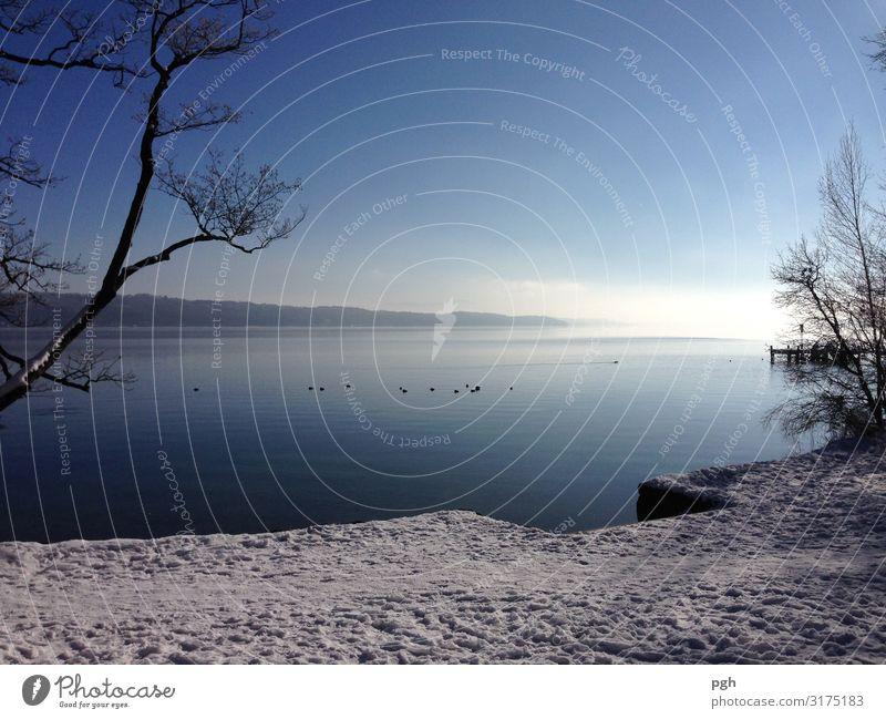 Nebel über dem Starnberger See Sonne Winter Eis Frost Seeufer Menschenleer Schifffahrt Wasser atmen Denken gehen Blick wandern frei schön blau weiß entdecken