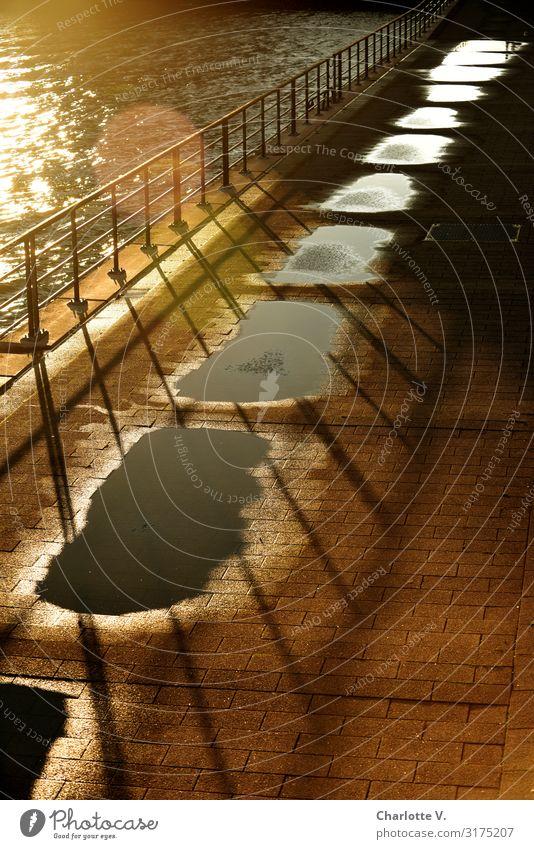 Goldener Mittelweg | UT HH19 Umwelt Urelemente Wasser Sonne Sonnenaufgang Sonnenuntergang Sonnenlicht Schönes Wetter Flussufer Menschenleer Geländer