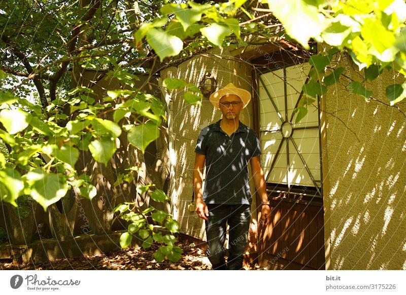 Unterm Blätterdach. maskulin Umwelt Natur Garten Hütte laufen Gärtner Licht Schatten Kontrast Reflexion & Spiegelung Lichterscheinung Sonnenlicht Sonnenstrahlen