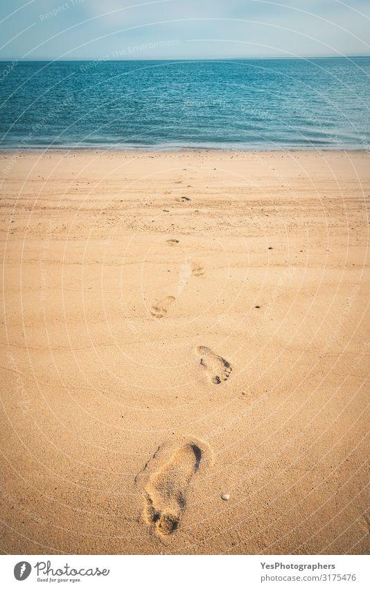 Fußspuren auf goldenem Sand am Nordseestrand auf der Insel Sylt Erholung Ferien & Urlaub & Reisen Sommer Strand Meer Natur Landschaft Klimawandel Wege & Pfade