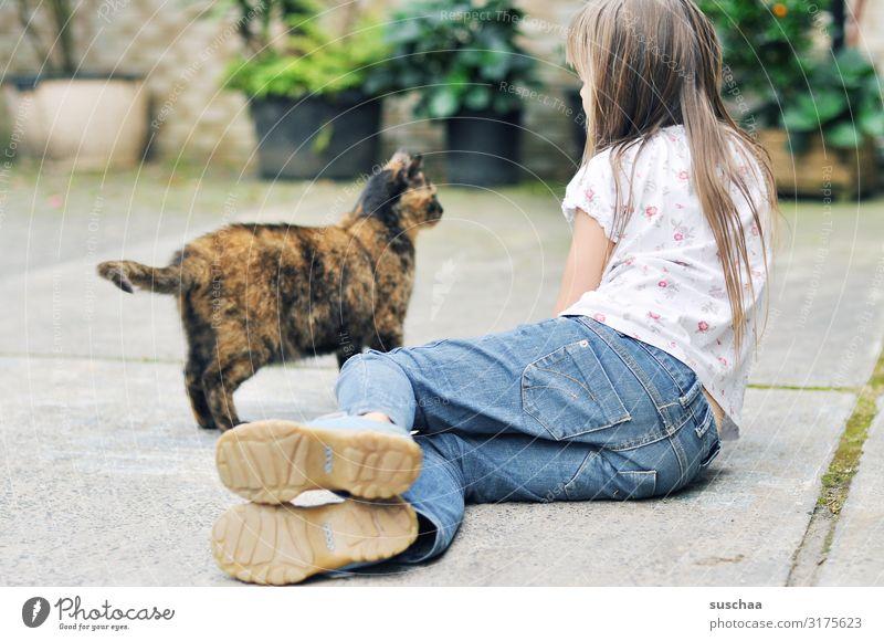 mädchen mit einer straßenkatze auf dem bauernhof Hof Bauernhof ländlich Kind Mädchen Katze Hauskatze Straßenkatze Haustier freilebend anschauen Kontaktaufnahme
