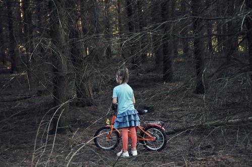 mädchen allein im wald Kind Baum Einsamkeit Wald Mädchen dunkel Fahrrad einzeln Ast Fahrradtour Suche Rock verloren Waldboden verirrt Unterholz